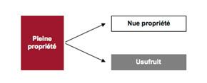 Schéma du démembrement de propriété